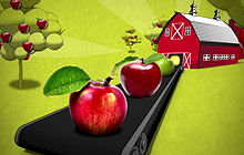 Agriculture and Agri-Food Canada - Food Science Game